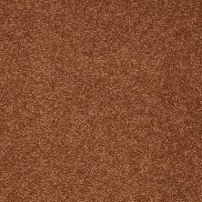 Shaw Floors Shaw Flooring Gallery Truly Modern I 12′ Dark Amber 00602_Q263G