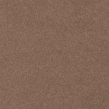 Shaw Floors Shaw Flooring Gallery Truly Modern I 12′ Muffin 00700_Q263G