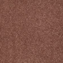 Shaw Floors Shaw Flooring Gallery Truly Modern I 12′ English Toffee 00706_Q263G