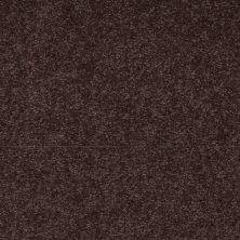 Shaw Floors Shaw Flooring Gallery Truly Modern II 15′ Tundra 00708_Q266G