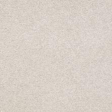 Shaw Floors Shaw Flooring Gallery Truly Modern III 12′ Mountain Mist 00103_Q267G
