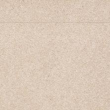 Shaw Floors Shaw Flooring Gallery Truly Modern III 15′ Cashew 00106_Q268G