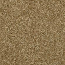 Shaw Floors Shaw Flooring Gallery Invite Possibility I 12 Celery 00300_Q314G