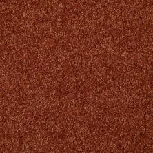 Shaw Floors Shaw Flooring Gallery Invite Possibility I 12 Maple Leaf 00601_Q314G