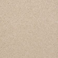Shaw Floors Shaw Flooring Gallery Invite Possibility II Cream 00101_Q315G
