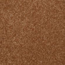 Shaw Floors Shaw Flooring Gallery Invite Possibility II Pecan Shell 00203_Q315G