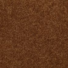 Shaw Floors Shaw Flooring Gallery Invite Possibility II Camel 00204_Q315G