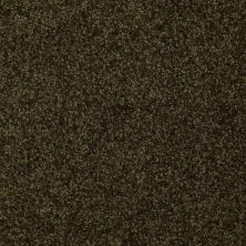Shaw Floors Shaw Flooring Gallery Invite Possibility II Pine 00304_Q315G