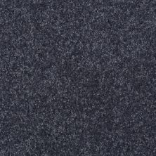 Shaw Floors Shaw Flooring Gallery Invite Possibility II Denim 00401_Q315G