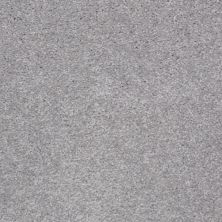 Shaw Floors Shaw Flooring Gallery Invite Possibility II Sterling 00500_Q315G