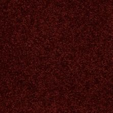 Shaw Floors Shaw Flooring Gallery Invite Possibility II Burnt Ember 00603_Q315G