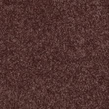 Shaw Floors Shaw Flooring Gallery Invite Possibility II Plum 00900_Q315G