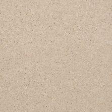Shaw Floors Shaw Flooring Gallery Invite Possibility III Cream 00101_Q316G