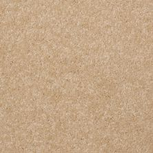 Shaw Floors Shaw Flooring Gallery Invite Possibility III Silk 00104_Q316G
