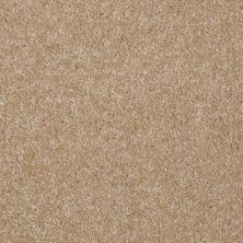 Shaw Floors Shaw Flooring Gallery Invite Possibility III Classic Buff 00108_Q316G
