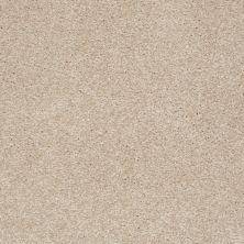 Shaw Floors Shaw Flooring Gallery Invite Possibility III Fresco 00109_Q316G