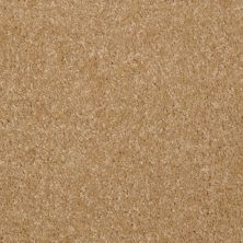 Shaw Floors Shaw Flooring Gallery Invite Possibility III Straw Hat 00201_Q316G