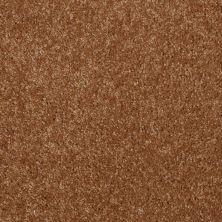 Shaw Floors Shaw Flooring Gallery Invite Possibility III Pecan Shell 00203_Q316G