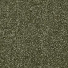 Shaw Floors Shaw Flooring Gallery Invite Possibility III Sage Leaf 00302_Q316G