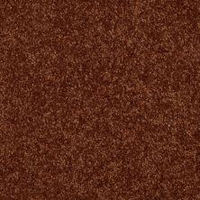 Shaw Floors Shaw Flooring Gallery Invite Possibility III Gingerbread 00602_Q316G