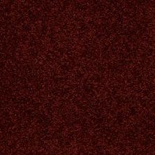 Shaw Floors Shaw Flooring Gallery Invite Possibility III Burnt Ember 00603_Q316G