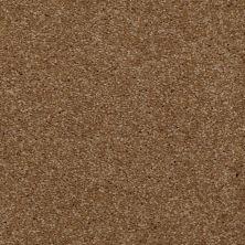 Shaw Floors Shaw Flooring Gallery Invite Possibility III Belt Buckle 00702_Q316G