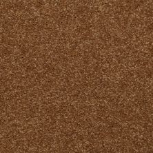 Shaw Floors Shaw Flooring Gallery Invite Possibility III Brass Button 00704_Q316G