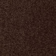 Shaw Floors Shaw Flooring Gallery Invite Possibility III Walnut 00706_Q316G