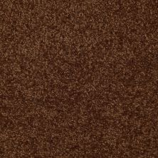 Shaw Floors Shaw Flooring Gallery Invite Possibility III Patina 00707_Q316G