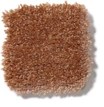 Shaw Floors Shaw Flooring Gallery Invite Possibility I 15′ Soft Copper Q321G_00600