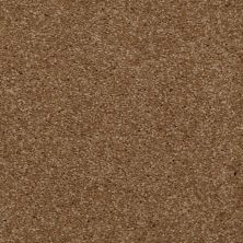 Shaw Floors Shaw Flooring Gallery Invite Possibility I 15′ Belt Buckle 00702_Q321G