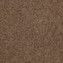Shaw Floors Shaw Flooring Gallery Invite Possibility I 15′ Jute 00703_Q321G