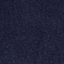 Shaw Floors Shaw Flooring Gallery Practical Magic 12′ Indigo 00404_Q331G