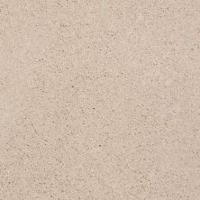 Shaw Floors Shaw Flooring Gallery Beau Rivage Ever After 00105_Q334G