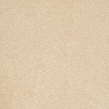 Shaw Floors Shaw Flooring Gallery Beau Rivage Canopy 00110_Q334G