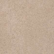 Shaw Floors Shaw Flooring Gallery Beau Rivage Sea Gull 00111_Q334G