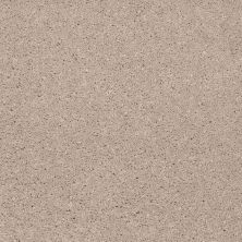 Shaw Floors Shaw Flooring Gallery Beau Rivage Ecru 00123_Q334G