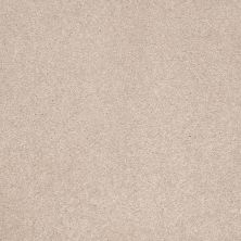 Shaw Floors Shaw Flooring Gallery Beau Rivage Goose Down 00124_Q334G