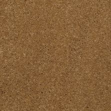 Shaw Floors Shaw Flooring Gallery Beau Rivage Honey 00266_Q334G