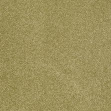 Shaw Floors Shaw Flooring Gallery Beau Rivage Dill 00321_Q334G