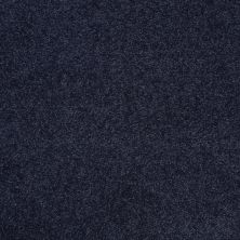 Shaw Floors Shaw Flooring Gallery Beau Rivage Evening Shade 00404_Q334G