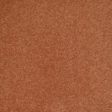 Shaw Floors Shaw Flooring Gallery Beau Rivage New Penny 00620_Q334G