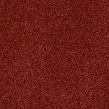 Shaw Floors Shaw Flooring Gallery Beau Rivage Copper Blaze 00642_Q334G