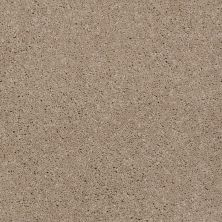 Shaw Floors Shaw Flooring Gallery Beau Rivage Feather 00702_Q334G