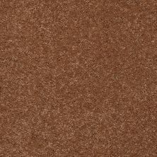 Shaw Floors Shaw Flooring Gallery Beau Rivage Maple Syrup 00709_Q334G