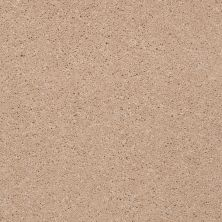 Shaw Floors Shaw Flooring Gallery Beau Rivage Cameo 00720_Q334G