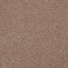 Shaw Floors Shaw Flooring Gallery Beau Rivage Dream Catcher 00740_Q334G