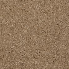Shaw Floors Shaw Flooring Gallery Beau Rivage Grain 00742_Q334G