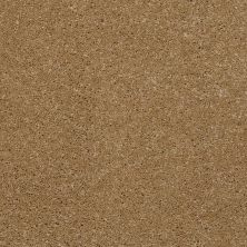 Shaw Floors Shaw Flooring Gallery Beau Rivage Straw Hat 00744_Q334G