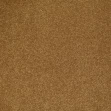 Shaw Floors Shaw Flooring Gallery Beau Rivage Serenade 00773_Q334G